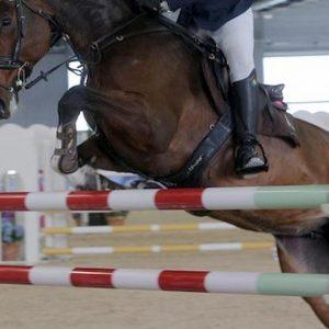 Antitrust, multa di 450 mila euro alla Federazione sport equestri