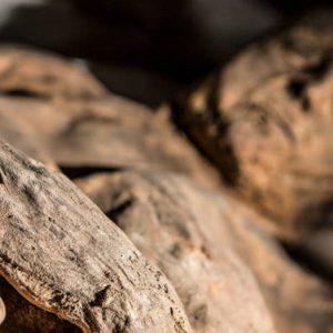 Groenlandia mummia inuit