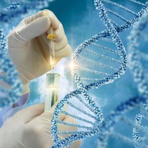 Test genetico per individuare rischio cancro e malattie cardiache: la proposta dell'azienda Usa Ancestry