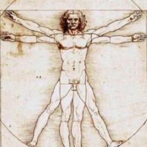 L'Uomo Vitruviano di Leonardo, Ansa