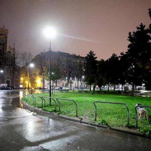 Torino, feto di tre mesi in provetta trovato in un'aiuola: era immerso in uno strano liquido