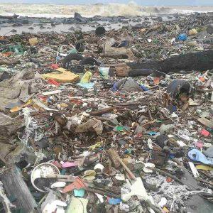 Fiumicino rifiuti costa