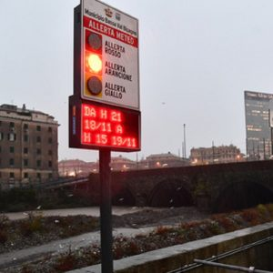 Nevi, Ansa