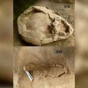 Ecuador, 2mila anni fa: bambini sepolti con elmetti di teschi di altri bambini