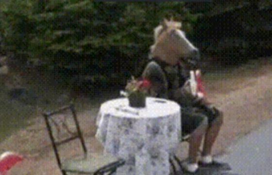uomo cavallo google maps