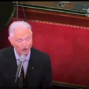 amedeo minghi canta in senato