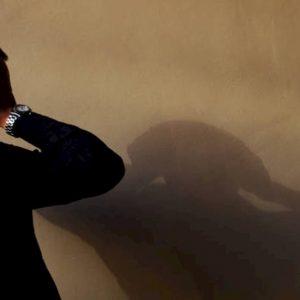 Censis: un italiano su due sogna l'uomo forte al potere. L'età dell'ansia, il Rapporto