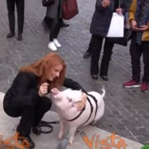 Michela Brambilla con un maiale al guinzaglio davanti alla Camera VIDEO