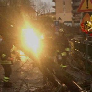 Maltempo arriva in Sicilia e Calabria sabato 14 dicembre: alberi caduti, torrenti straripati, ormeggi rotti