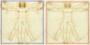 Uomo Vitruviano, l'algoritmo della Divina Proporzione. Scoperto, allo specchio, il codice di Leonardo