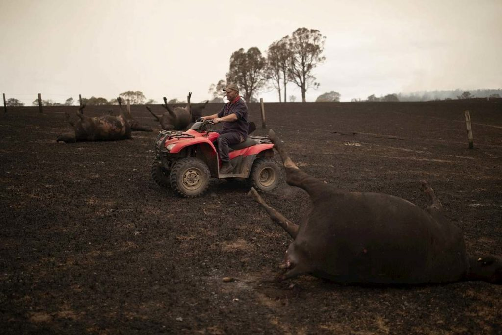 Australia devastata dagli incendi1