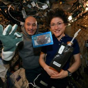 Biscotti cucinati sulla Iss: primi cibi cotti nello spazio arrivano sulla Terra