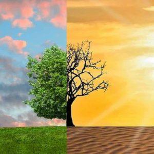 Cambiamento climatico. Clima, la Ue ci mette mille miliardi. Cambia il colore dei soldi