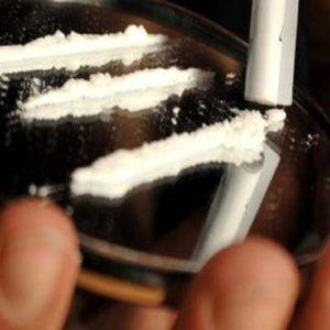 Cocaina, Ansa
