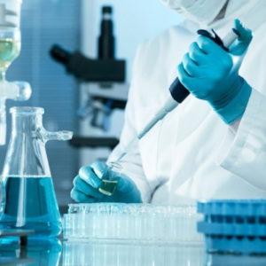 Vaccino Coronavirus, almeno 3 mesi per la sperimentazione sull'uomo