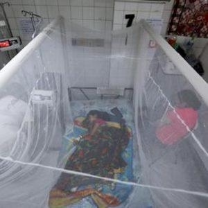 Dengue, 78 bambini morti in Yemen, 52mila casi sospetti: rischio epidemia