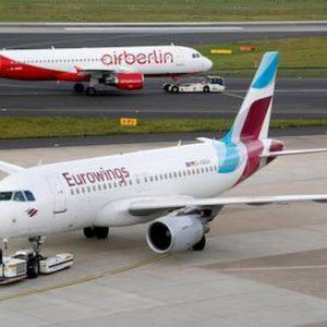 Il cane pesa troppo: Eurowings nega l'imbarco in aereo