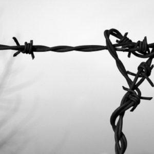Auschwitz, Ansa