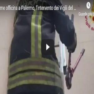 Palermo, Vista
