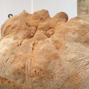 Pane, il migliore d'Italia nel 2019 a Matera. Il Gambero Rosso incorona il forno Perrone
