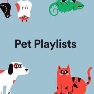 Musica da cani... e da gatti. La playlist di Spotify dedicata ai nostri amici (iguane e criceti compresi)