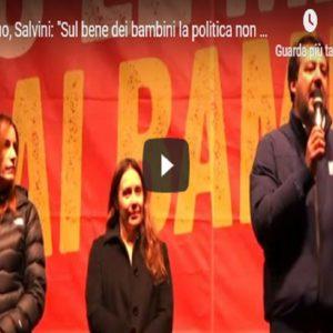Salvini, Vista