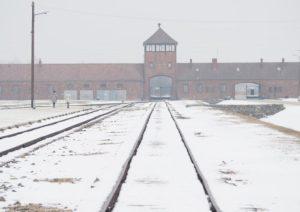 """""""Shoah mai esistita. Antisemitismo? Il vero problema sono i migranti"""": così gli italiani secondo Eurispes"""