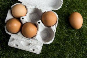 """Il ministero della Salute richiama uova biologiche e formaggio Puzzone di Moena: """"Rischio Listeria"""""""