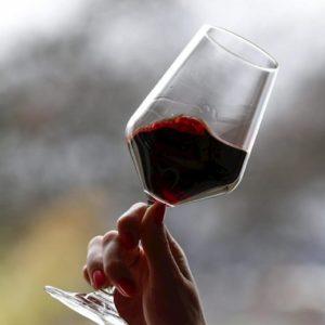 Falsi vini Doc e Igt: li miscelavano con acqua e zucchero. 5 arresti nell'Oltrepò Pavese