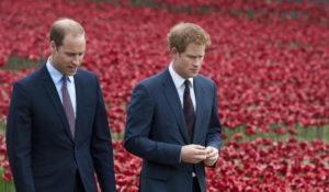 Principe William triste per il fratello Harry: Siamo entità separate