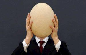 Chi vuol essere milionario: ecco cos'è l'aepyornis, l'uccello elefante della domanda da 70 mila euro
