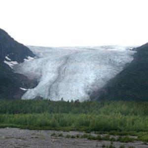 Alaska, Ansa