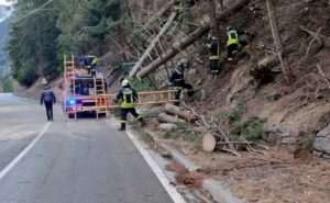 alberi caduti valle d'aosta