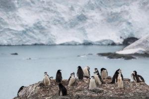 Caldo record Antartide: temperatura segna i 20.75 gradi