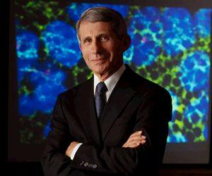 """Coronavirus, l'immunologo Anthony Fauci: """"Primo test su vaccino in due o tre mesi"""""""