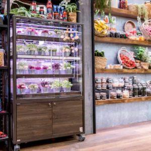 Micro-ortaggi per supermercati e ristoranti nelle vetrine di Cefla