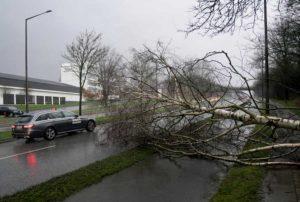 Tempesta Ciara arriva in Italia: raffiche di vento a 100 Km/h in Sardegna e regioni del Centro