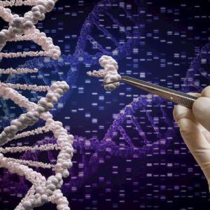 Cancro, scoperte mutazioni genetiche che possono far sviluppare i tumori