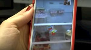 frigo vuoto codogno
