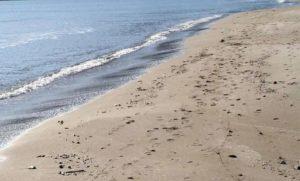 Argentina, bimba di 2 anni sepolta nella sabbia fino al collo. E i genitori a farlo in mare