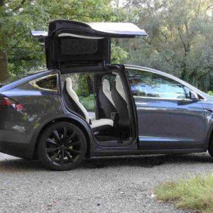 Gb, quercia cade su due Tesla: 2 famiglie salve grazie alla frenata automatica