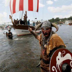 I vichinghi prima delle invasioni bevevano tisane allucinogene a base di giusquamo