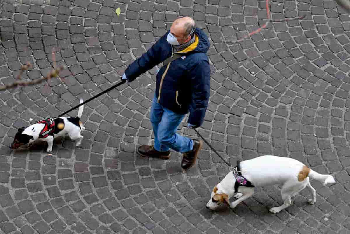 Coronavirus Italia, le zampe dei cani da lavare e i farmaci russi, giapponesi...marziani