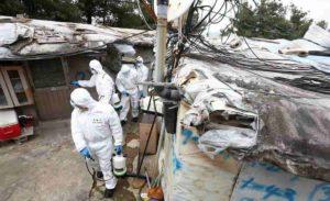 Coronavirus, ci mancava la setta (para cristiana) del curarsi è peccato in Corea del Sud