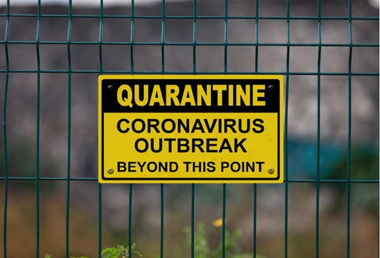 Coronavirus, Ansa