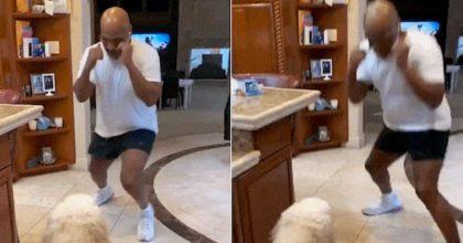 Mike Tyson e il business dei video sui social, ecco l'allenamento con il suo cane Mars