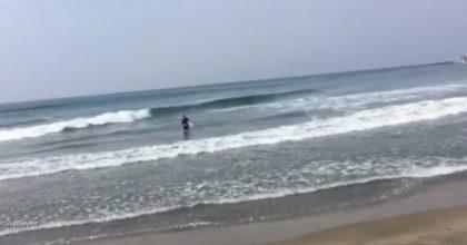 Coronavirus, sorpreso a fare surf a Ladispoli: la polizia a cavallo lo allontana