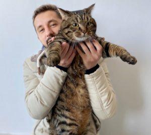 Russia, il gatto Viktor respinto dall'aereo perché grasso. La sua storia diventa un caso mondiale