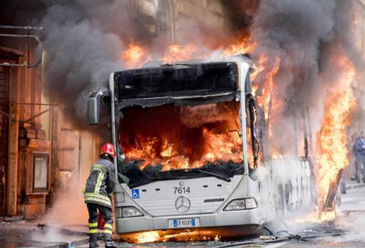Bus, Ansa