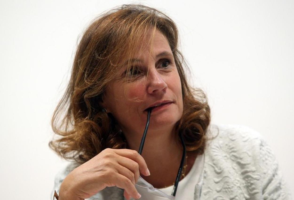 Ilaria Capua, Ansa